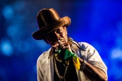 Photo-Concert-Michael-Prophet-Garance-Reggae-Festival-Bagnols-su